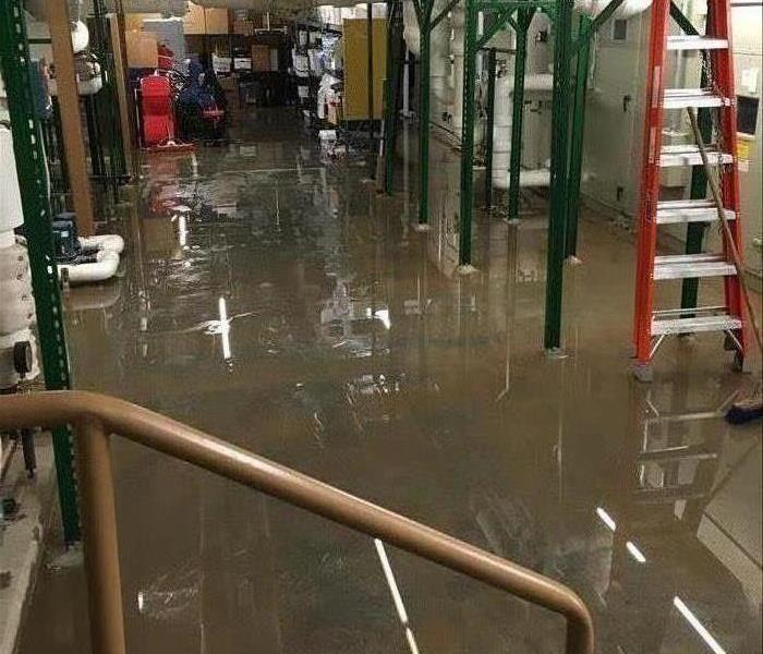 Water covering a basement floor.