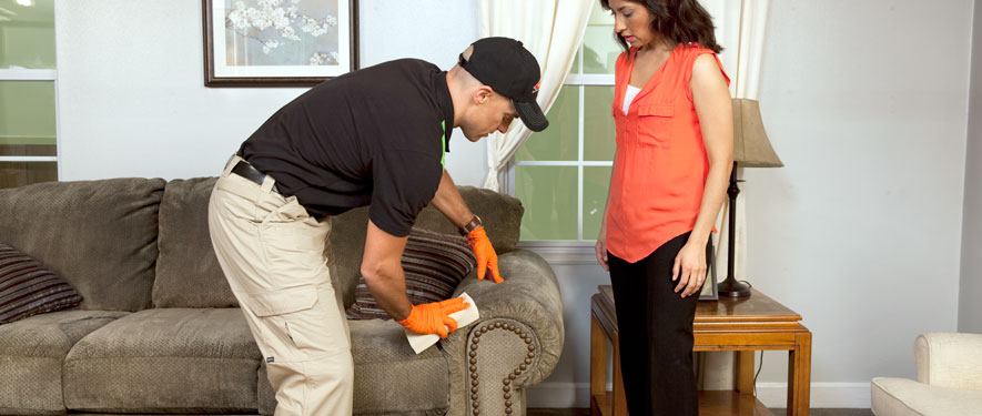 Missoula, MT carpet upholstery cleaning
